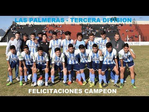Las Palmeras Campeón - Tercera División -2017