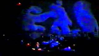 Pink Floyd Live at Turin 13th Sept 1994  Astronomy Domine