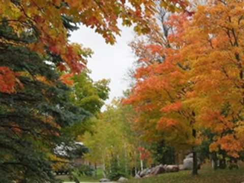 Les Feuilles Mortes (Autumn Leaves) Andrea Bocelli