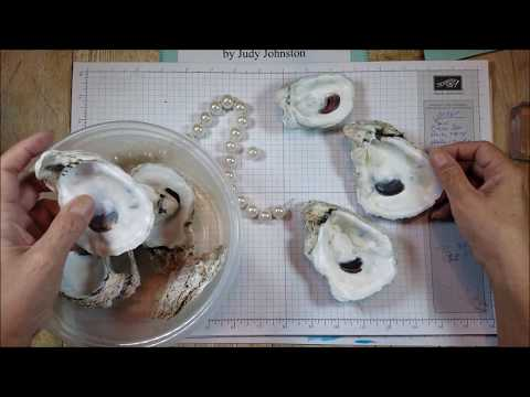 Oyster Shell with Pearl Feet