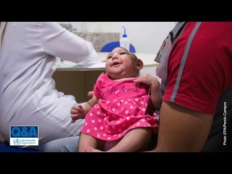 WHO: Microcephaly and Zika virus infection - Questions and answers (Q&A)