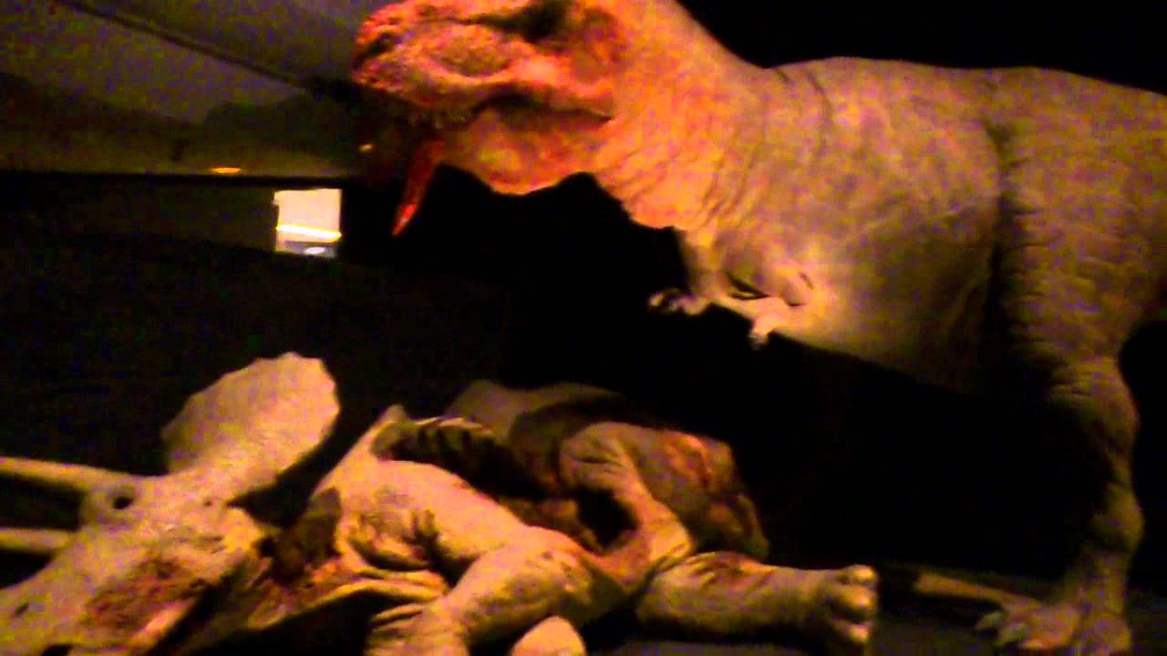 T- Rex with a Dead Triceratops - YouTube