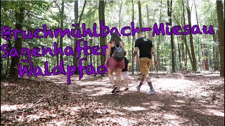 FAMILY HIKING NEAR RAMSTEIN       FATHERS DAY HIKE IN GERMANY