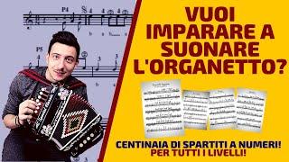 Lezione di organetto  TUTORIAL METODO A NUMERI del maestro Mario Carbone