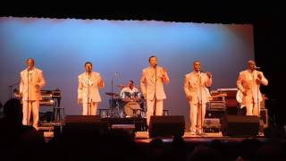 Rubberband Man The Spinners