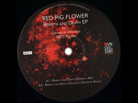 Red Pig Flower - Weird Weekend (BRYZ Remix) Mp3