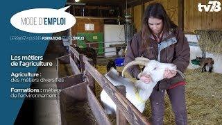 Mode d'emploi : les métiers de l'agriculture