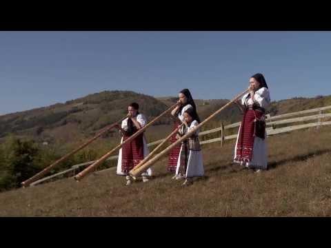 Tulnice în Munții Apuseni
