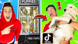 WE TESTED 10 VIRAL TIKTOK LIFE HACKS for PETS! **EASY DIY** (Challenge)