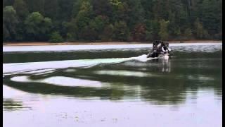 Лодка пвх гладиатор 330 + мотор yamaha 5 4т + тент(Лодка пвх гладиатор 330 + мотор yamaha 5 4т + тент., 2015-09-06T20:51:48.000Z)