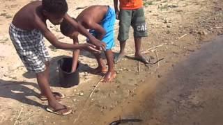 Sitio do Mato BA pesca 2
