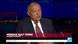 EXCLUSIVE   Egyptian FM Sameh Shoukry accuses Qatar of fomenting terrorism in Egypt