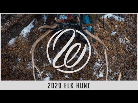 2 Bulls in 5 Days — Husband/Wife Elk Hunt with Adam and Brenda Weatherby