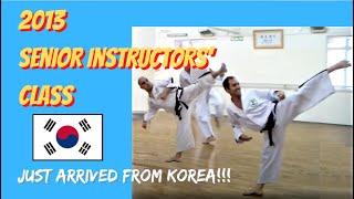 Taekwon-Do Senior Instructors Class July 2013 (Korean Martial Arts' Dynamic Basis)