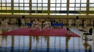 Festival Martial Arts 3-6-2018 - Agrinio Special Team