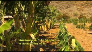 MA'O Farms ('Aha'i 'Olelo Ola 12-10-2010)