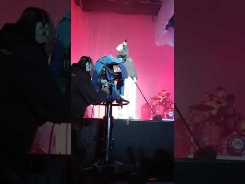 Cro - Baum Live / Openair Gampel 2017