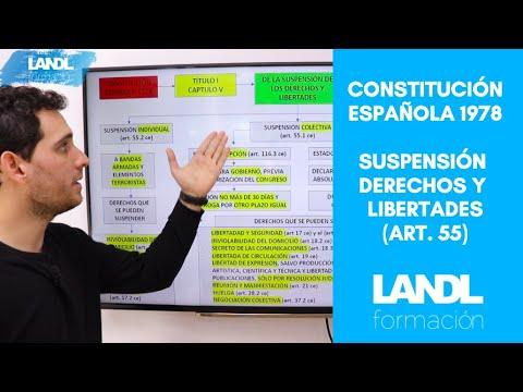 Esquema constitución española 1978 oposiciones, suspensión de los derechos y libertades y estados.