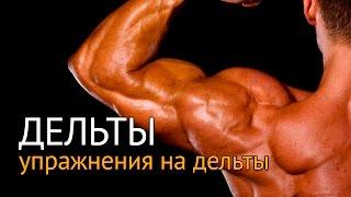Упражнения на дельты - тренировка отстающих дельт(Читайте нас на сайте: yourbodymind.org Мышцы, которые формируют плечо, называют дельтовидными. Они состоят из трех..., 2016-02-18T09:30:31.000Z)