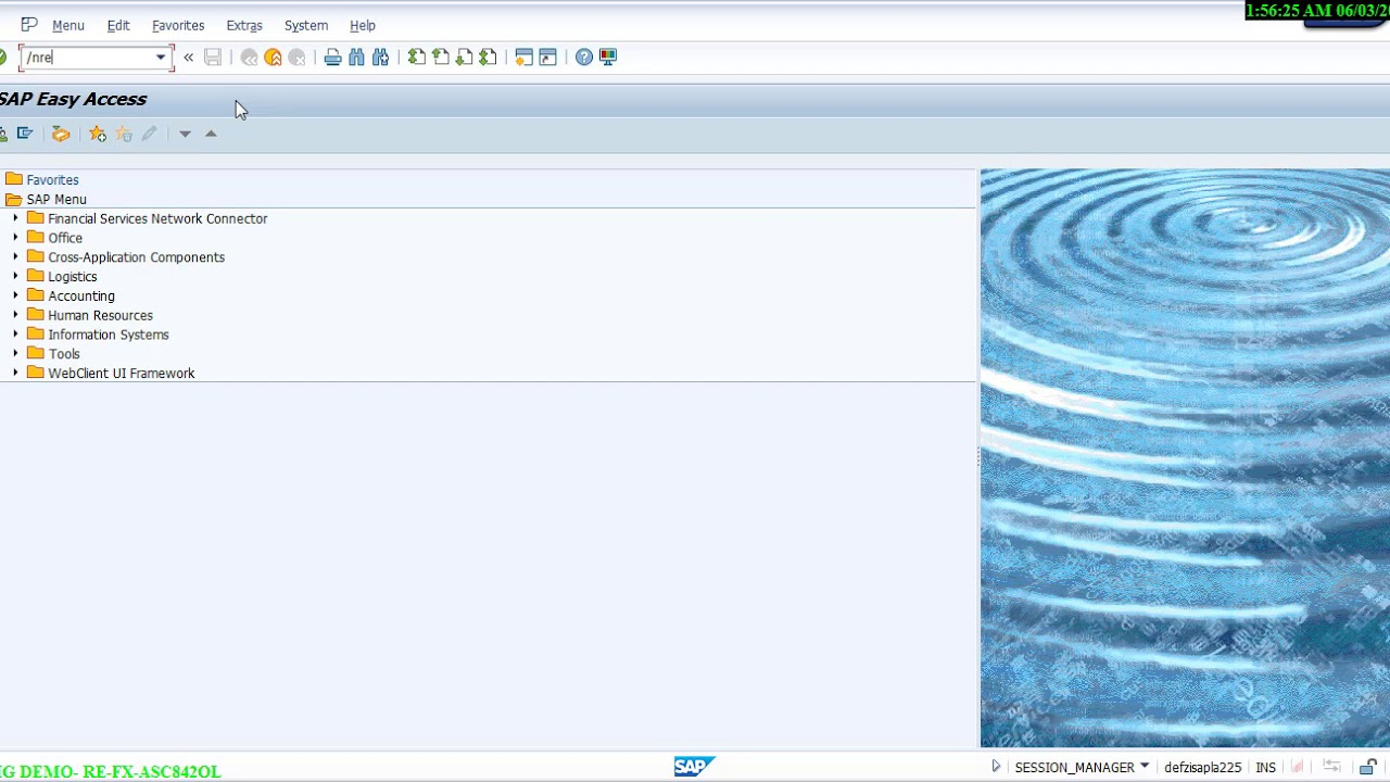 SAP RE-FX for compliance with Leasing standard ASC 842 / IFRS16