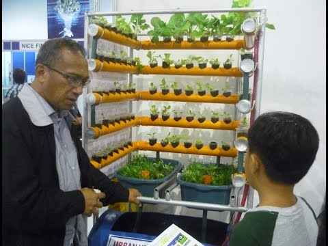 Hydroponics & Aquaponics By Dr.  Chito F.  Sace Part 1