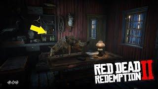 RDR 2 - Как попасть в дом набивщика чучел Миссис Хоббс?