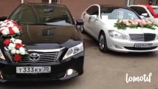 Свадебный кортеж TOYOTA CAMRY город Астрахань