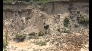 Жуткая трагедия в селе Тиинск
