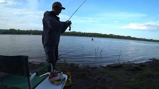 Рыбалка на реке Ока . весна 2019 год .