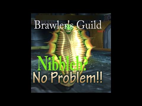 Brawlers Guild | 7.1.5 | Fury Vs Nibbleh | Easy Strat