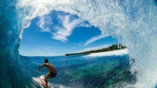 SURFER - Momentum Reunion
