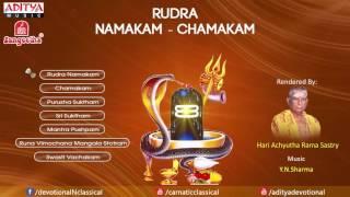 Rudra Namakam Chamakam by Y N  Sharma   YouTube