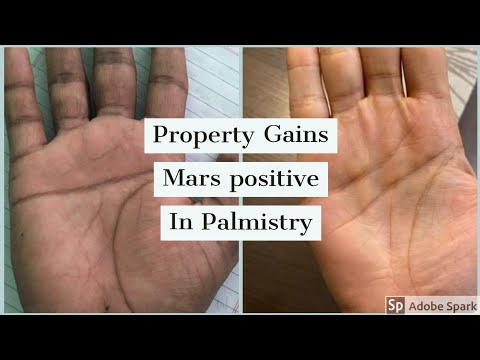 Palmistry Gains from Property  Watchmaker & Properly Dealer Palm reading