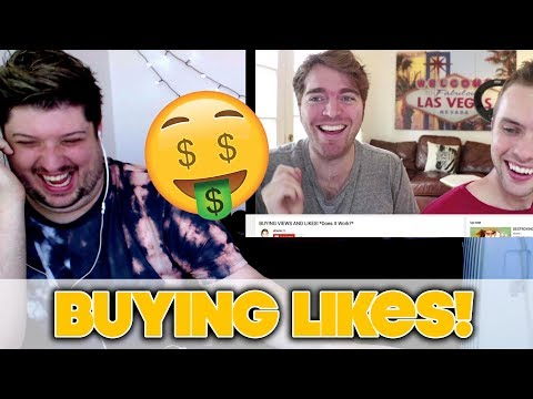 BUYING VIEWS AND LIKES! *Does It Work?* -Shane Dawson | REACTION!