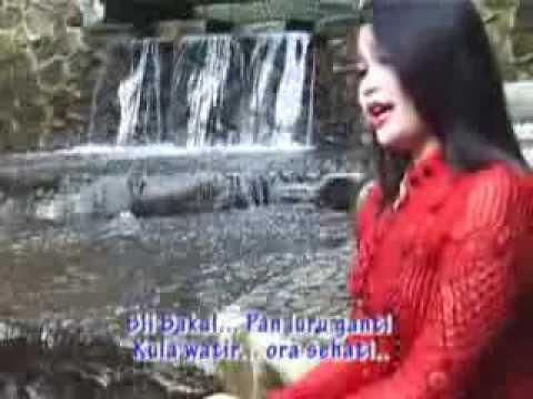TARLING Apa Tambane ( Dian Anic )-KIEN-.flv
