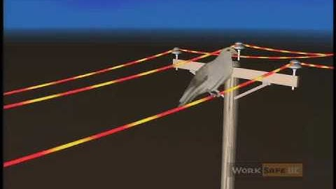 a bright arc a guide to power line safety full length