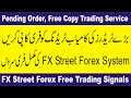 Free Forex signals and Copy system  FX street trading service review Tani tutorial in Urdu & Hindi