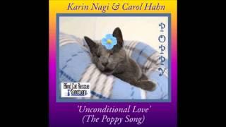 Karin Nagi & Carol Hahn  Unconditional love Julian Marsh radiomix)