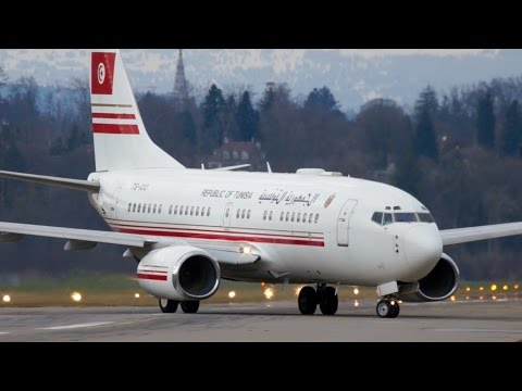 Boeing 737 * Government of Tunisia * Landing at Bern
