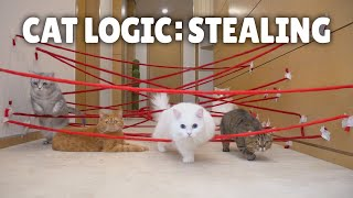 Cat Logic: Stealing | Kittisaurus