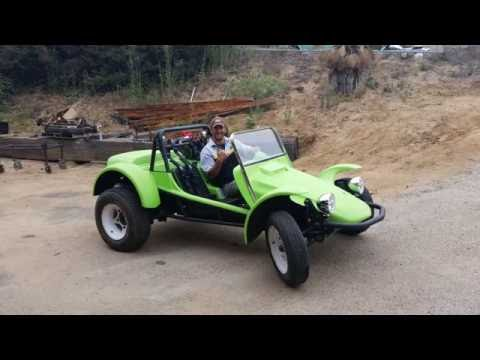 Lori-Ann's Meyers manx Tow'd gets Born 2014
