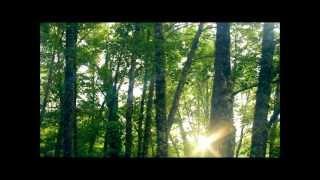 Freedom Satellite feat Kudra Owens - Running Fast
