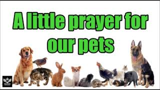 A little prayer for our pets
