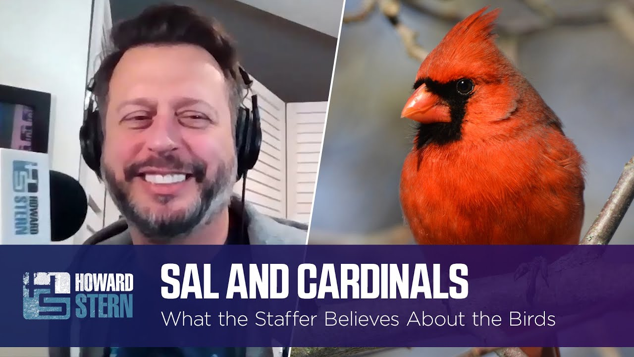 Sal Thinks Cardinals Are Signs From the Dead