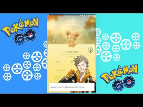 Pokemon GO // hatching eggs 10 km, Magikarp cp 171 evolution and Teddiursa cp 509