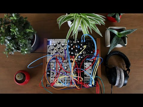 Ambient session w/ modular synth (Mutable Instruments Rings, Plaits, Marbles, Make Noise Morphagene)