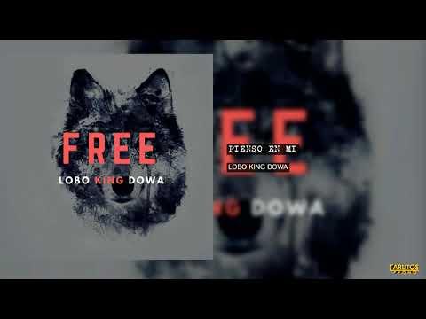 Lobo King Dowa - Pienso En Mi (Audio Oficial)