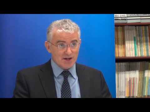 Ambassador Daniel Taub interview