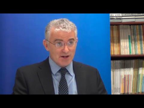 Ambassador Daniel Taub interview