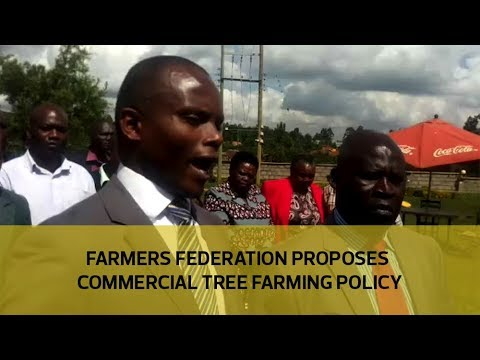 Farmers federation proposes commercial tree farming policy